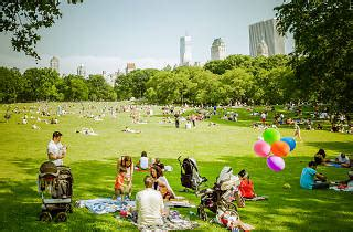 best picnic spots in central park for a picturesque