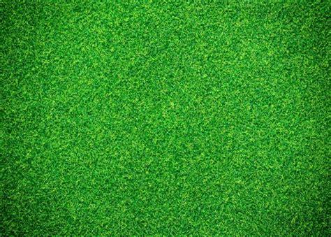 Flooring Business Plan by Green Grass Background Photo Premium Download