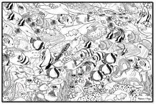 Melissa amp doug jumbo color in poster tropical sea life