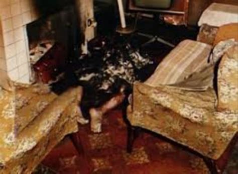 true stories of macabre monstrous creatures monstrous monsters books top 10 real spontaneous human combustion stories in the