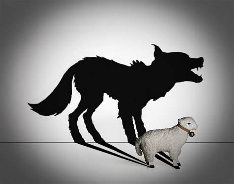 he was a wolf in sheep s clothing 2 volume 2 books the importance of prophetic discernment and avoiding false