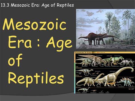 mesozoic era 13 3 mesozoic era age of reptiles ppt video online download