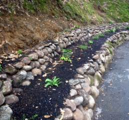 erosion control more ideas for your edible landscape