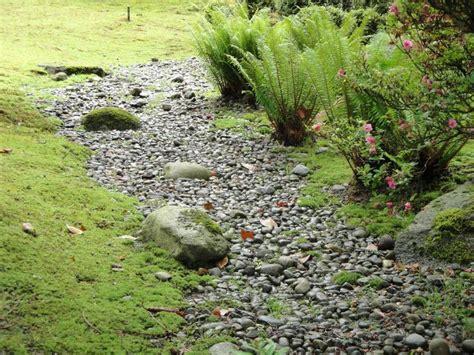 backyard dry river bed dry river beds ferns japanese garden pinterest