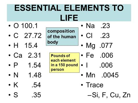 essential elements to include in biochemistry ppt video online download