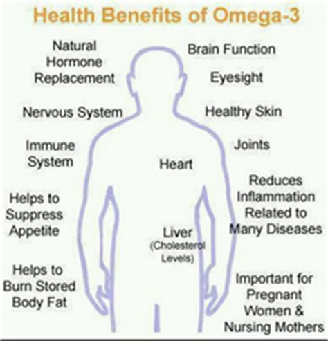 omega 3 supplements benefits health benefits of best omega 3 supplement review released