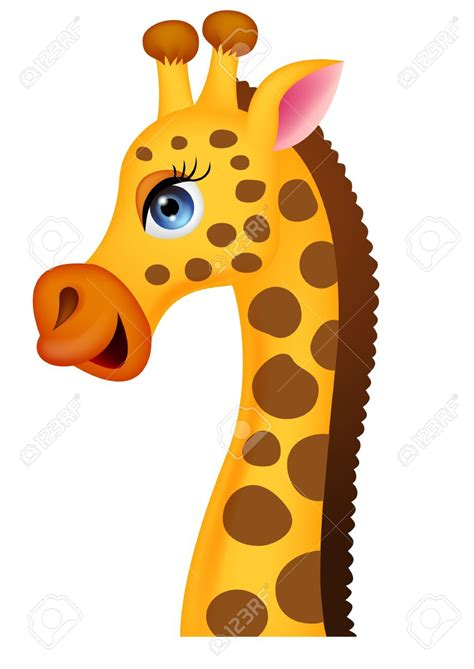 giraffe clipart face   cliparts  images