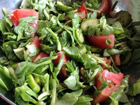semizotu tarifi tarifi g 246 taze b 246 r 252 lce salatası tarifi izle