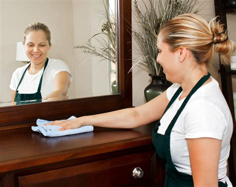 How Much Do Room Attendants Make by A Squeaky Clean House Is Possible Even With Pets