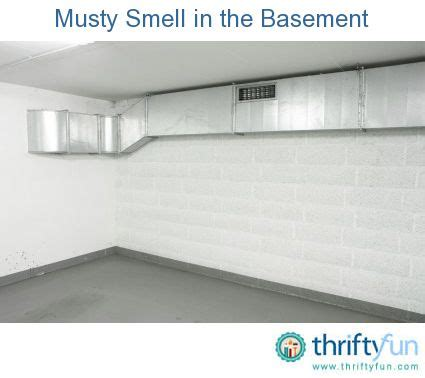 how to get rid of musty basement smell 17 best images about basement on initials