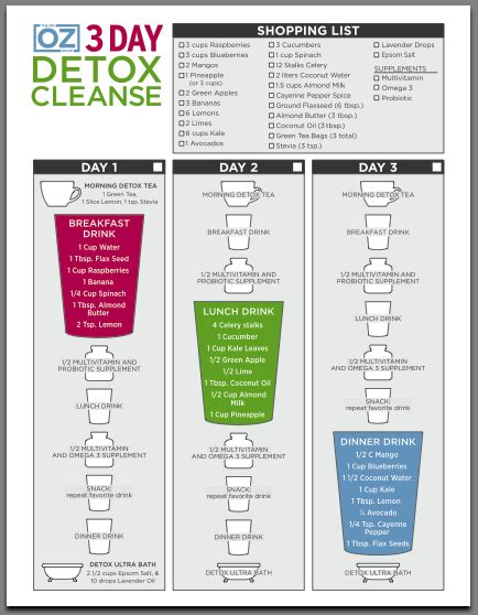 Cleanse Detox Diet Menu by 3 Day Detox Cleanse Meal Plan Dr Oz