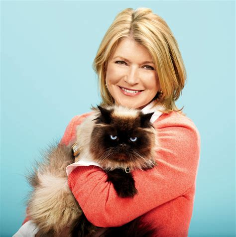 Martha Stewart Giveaway - giveaway martha stewart for petsmart cat feeder set with mat life with cats