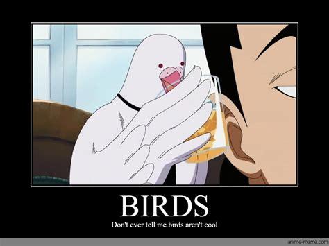 Anime Meme Pictures - birds anime meme com