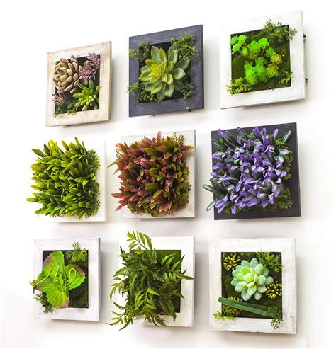 popular plant frames buy cheap plant frames lots from china plant frames suppliers on aliexpress com