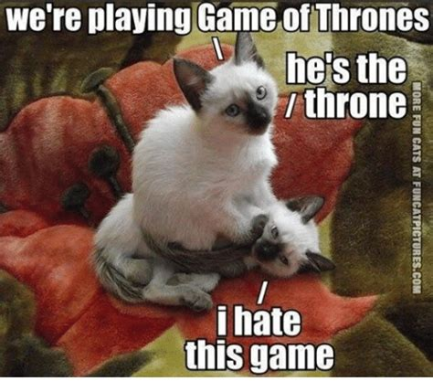 playing game  thrones    throne  hate
