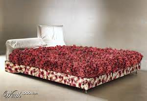 bed of roses idioms and literalisms pinterest beds