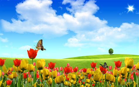 wallpapers for xp desktop free download new windows xp desktop wallpapers free on latoro com