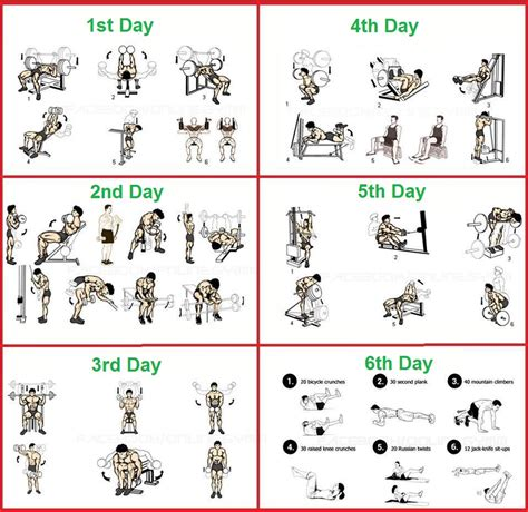 the 6 day beginner s bodybuilding program all