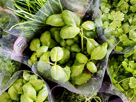 het gezonde seizoen groente fruit gimsel natuurlijk beter