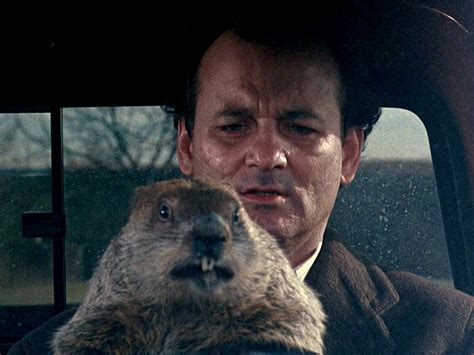 groundhog day with bill murray this amazing supercut shows every day in groundhog day