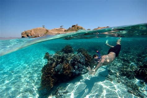 best snorkeling destinations 10 of the world s best snorkeling destinations travel