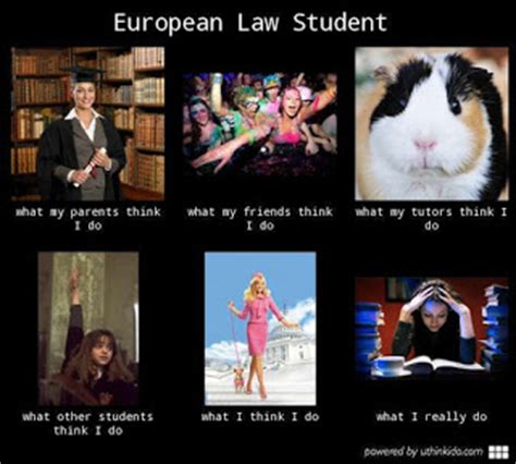 what about law studying eu law analysis studying eu law a law student s guide
