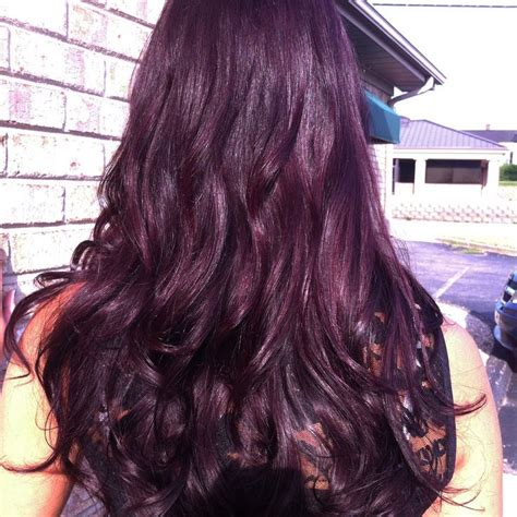 violet brown hair color mahogany violet hair color www pixshark
