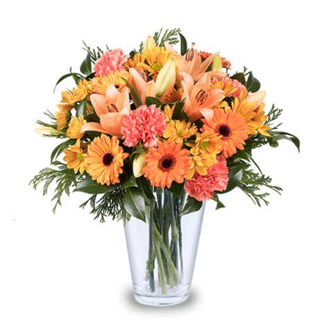 fiori per chiedere scusa fiori per chiedere scusa consegna a domicilio floraqueen