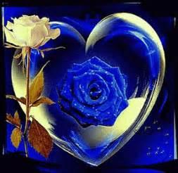 rosas brillantes con movimiento