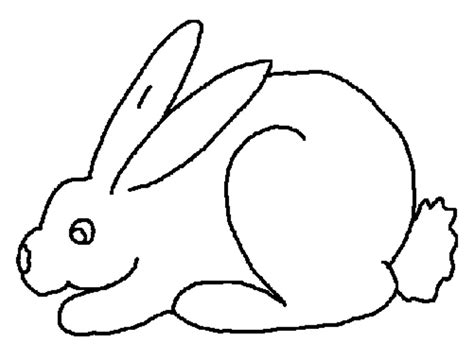 coloring pages rabbit rabbits coloring pages realistic realistic coloring pages