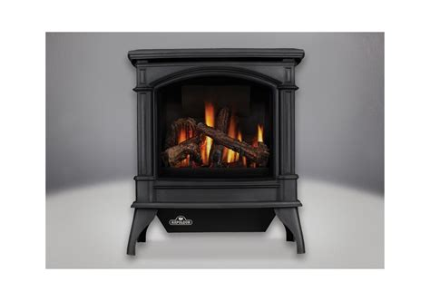 napoleon gds60 1nsb painted metallic black 35000 btu free