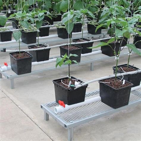 Hydrohobby For All Your Hydroponics Gear by Low Profile Bench 19 Quot W X 7 Quot H X 144 Quot L