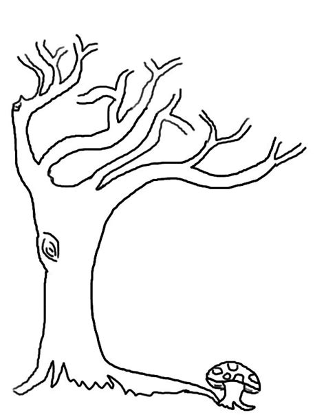 printable tree without leaves coloring for kids tree 104 best l 193 images on pinterest leaves silhouette
