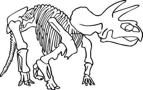 coloring pages of dinosaur bones dinosaur line drawing cliparts co