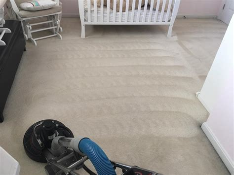 your best carpet cleaning louisville ky professional