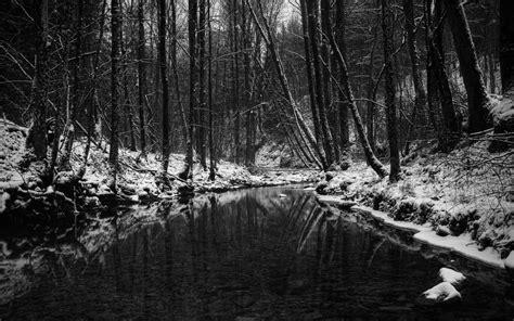 black winter 2560x1600 winter in black and white desktop pc and mac