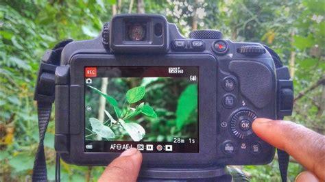 Nikon P900 Fps by Nikon Coolpix B700 P900 B500 Best Focus Settings Settings Tutorial 2018