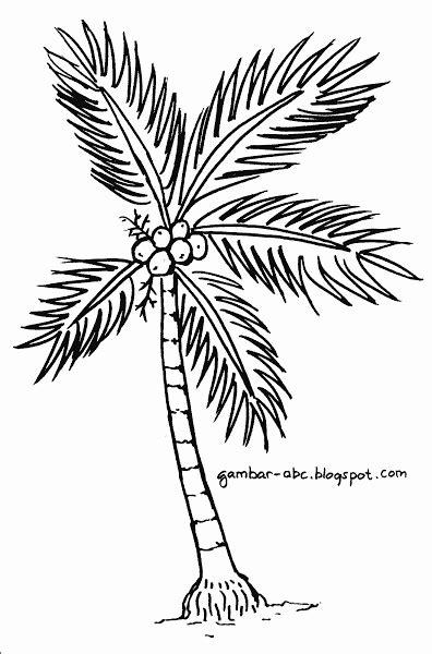 Kumpulan Sketsa Gambar Mewarnai Pohon Terbaru