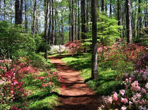 Callaway Gardens by 25 Best Things To Do In The Tourist