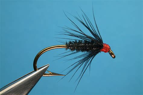 black gnat pattern black gnat leisenring