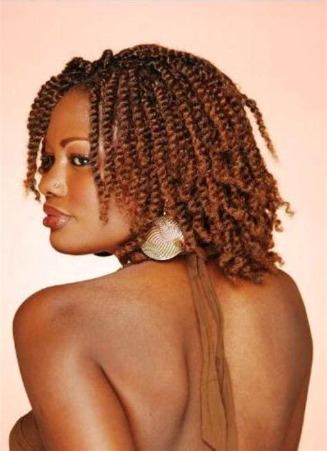 Hairstyles For 2013 by Braided Black Hairstyles 2013 Hairstyle Of Nowdays