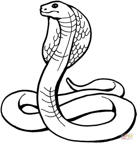 king cobra coloring online super coloring