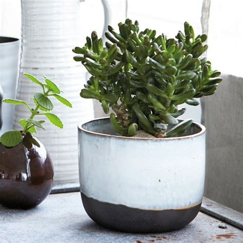 modern ceramic pots planters amazing modern ceramic planter architectural