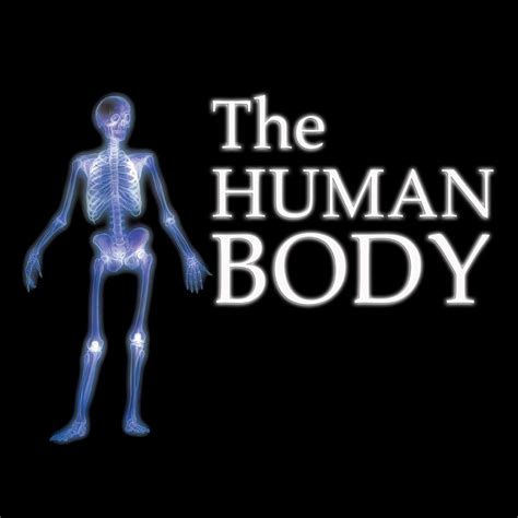 the human body everything you want to know about the human body
