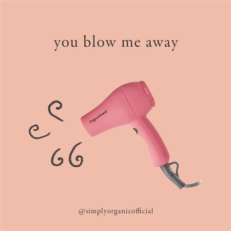 Hair Dryer Quotes hair stylist quotes simply organic