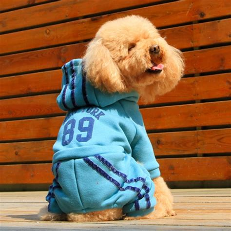 onesies for dogs dogs in onesies www imgkid the image kid has it