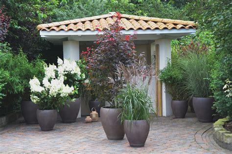 terrasse terrasse pflanzen balkon und
