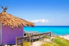 hutte tropicale turquoise la cara 239 be du soleil de plage de hutte de palapa