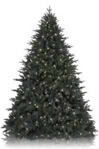 7 5 balsam hill durango douglas fir artificial christmas tree christmas trees 2015