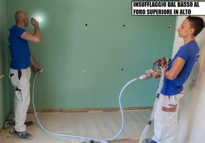 Repellente Per Lucertole Fai Da Te by Esterni Esperto In Casa